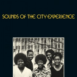 Sounds of the City Experience