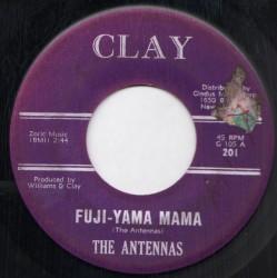 Fuji-Yama Mama
