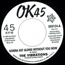 Gonna Get Along Without You Now