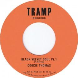 Black Velvet Soul