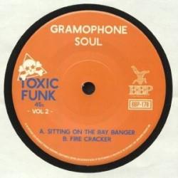 Toxic Funk Vol. 2