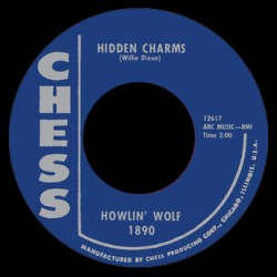 Hidden Charms / You Need Love
