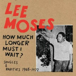 How Much Longer Must I Wait? Singles & Rarities 1965-1972