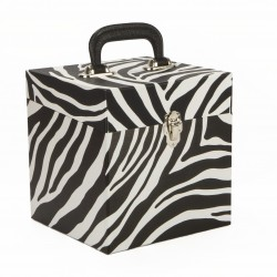 NEW Small Zebraskin 45 Record Box