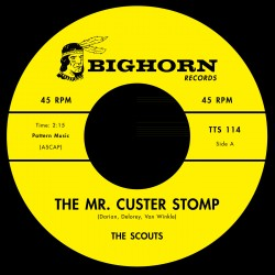 Mr Custer Stomp / Firewater