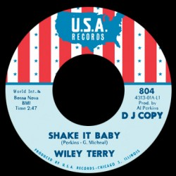 Shake It Baby / I Will Be Got Dog